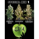 Special Mix  1